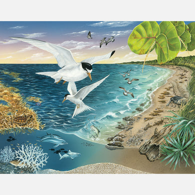This illustration depicts a nearshore region of southeast Florida. The art features least terns, sea turtles, and several other plants and animals associated with the nearshore region.