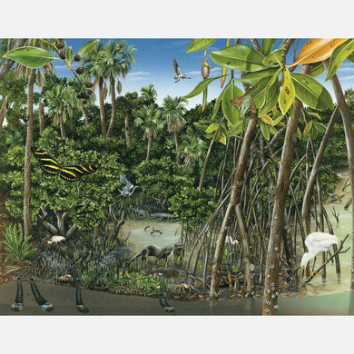 This illustration depicts an intertidal lagoon of southeast Florida. The art features mangroves, a river otter, a snowy egret, and several other plants and animals associated with the lagoon.