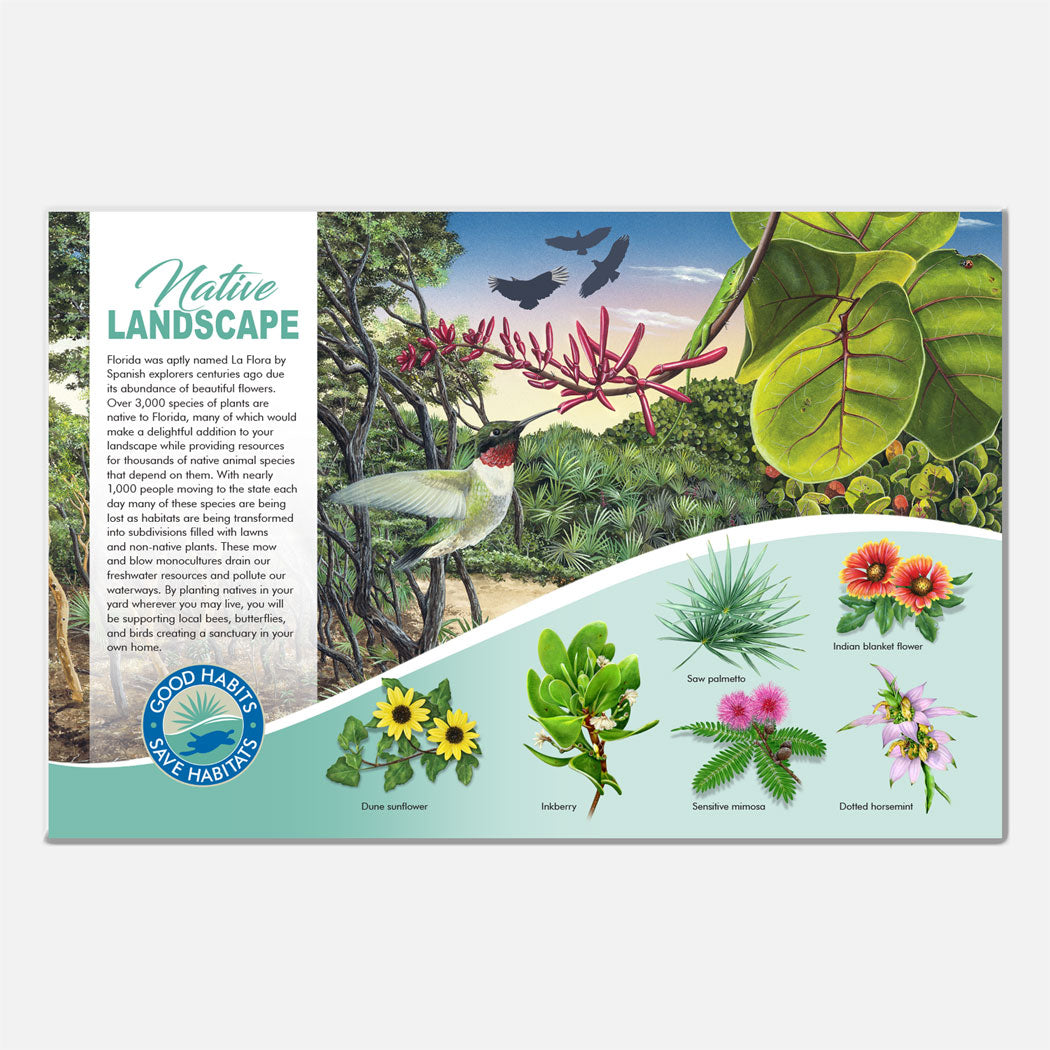 This beautiful Florida native landscaping deck signage was created for The Barrier Island Center, an environmental education facility located in Brevard County, Florida.