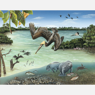 This illustration depicts a subtidal lagoon of southeast Florida. The art features a brown pelican, manatees, and several other animals associated with the lagoon.