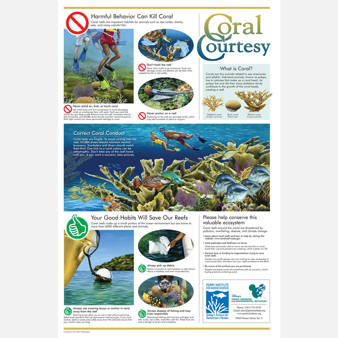 This beautiful poster provides information on the value of corals and the harmful effects human activity can have on them.