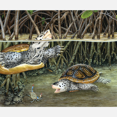 This beautiful, highly detailed and accurate illustration is of a pair of diamondback terrapins, Malaclemys terrapin tequesta, foraging in mangroves.