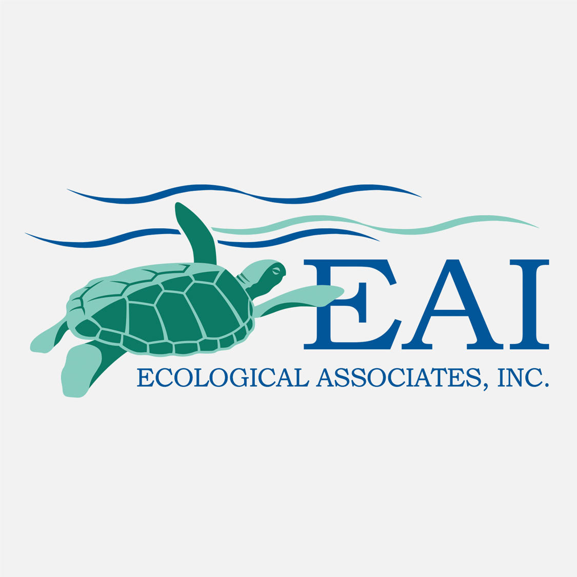 EAI provides environmental monitoring, permitting, and consultation services. The logo is a graphic of a swimming green turtle.