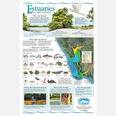 This beautiful poster provides information about estuaries of southwest Florida.