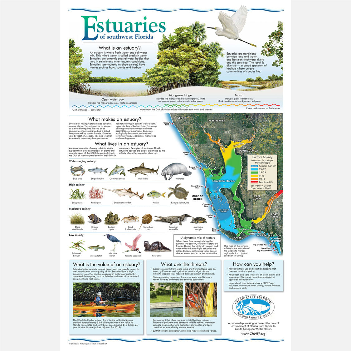 Estuaries of southwest Florida poster