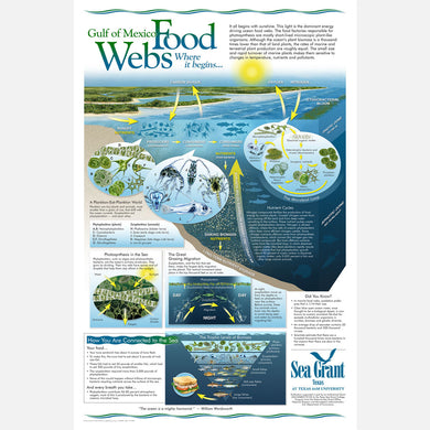 This beautiful poster provides information on food webs of the Gulf of Mexico and how the are connected.