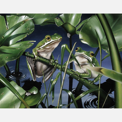 This beautiful oil painting is of a pair of green tree frogs on spatterdock, a floating freshwater plant.