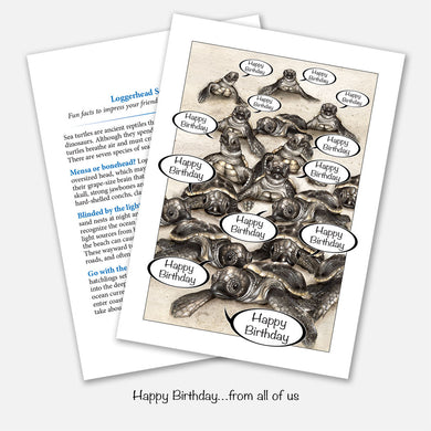 Sea Turtle Hatchlings From All of Us Birthday Card