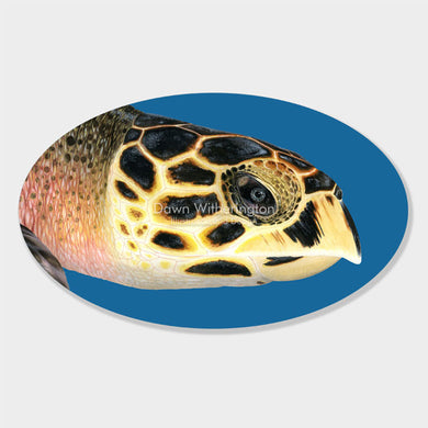 This beautiful illustration of the head of a hawksbill sea turtle, Eretmochelys imbricata, is biologically accurate in detail.