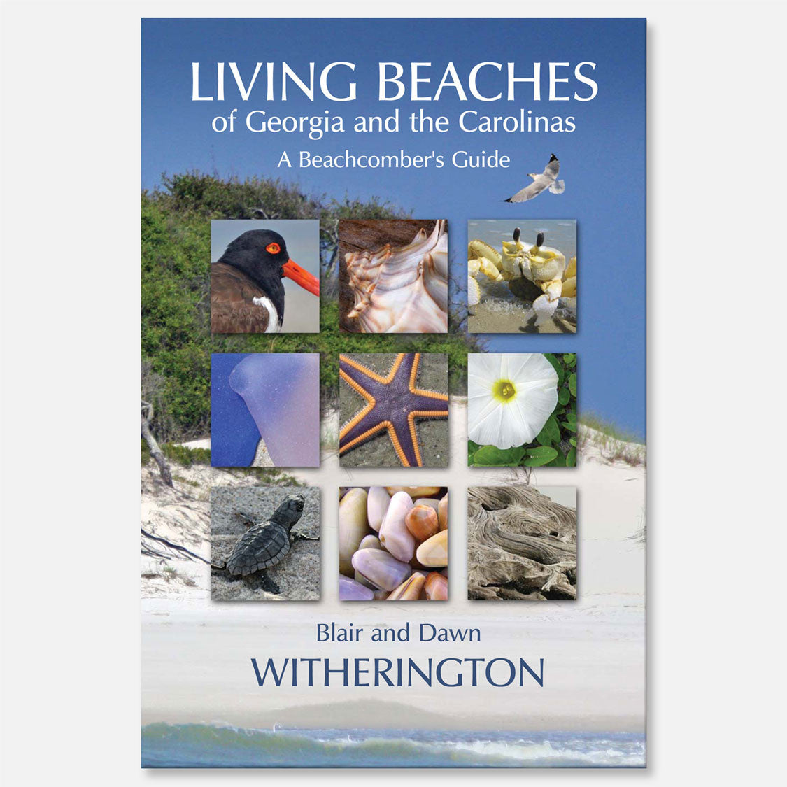 Living Beaches of Georgia and the Carolina's by Blair and Dawn Witherington