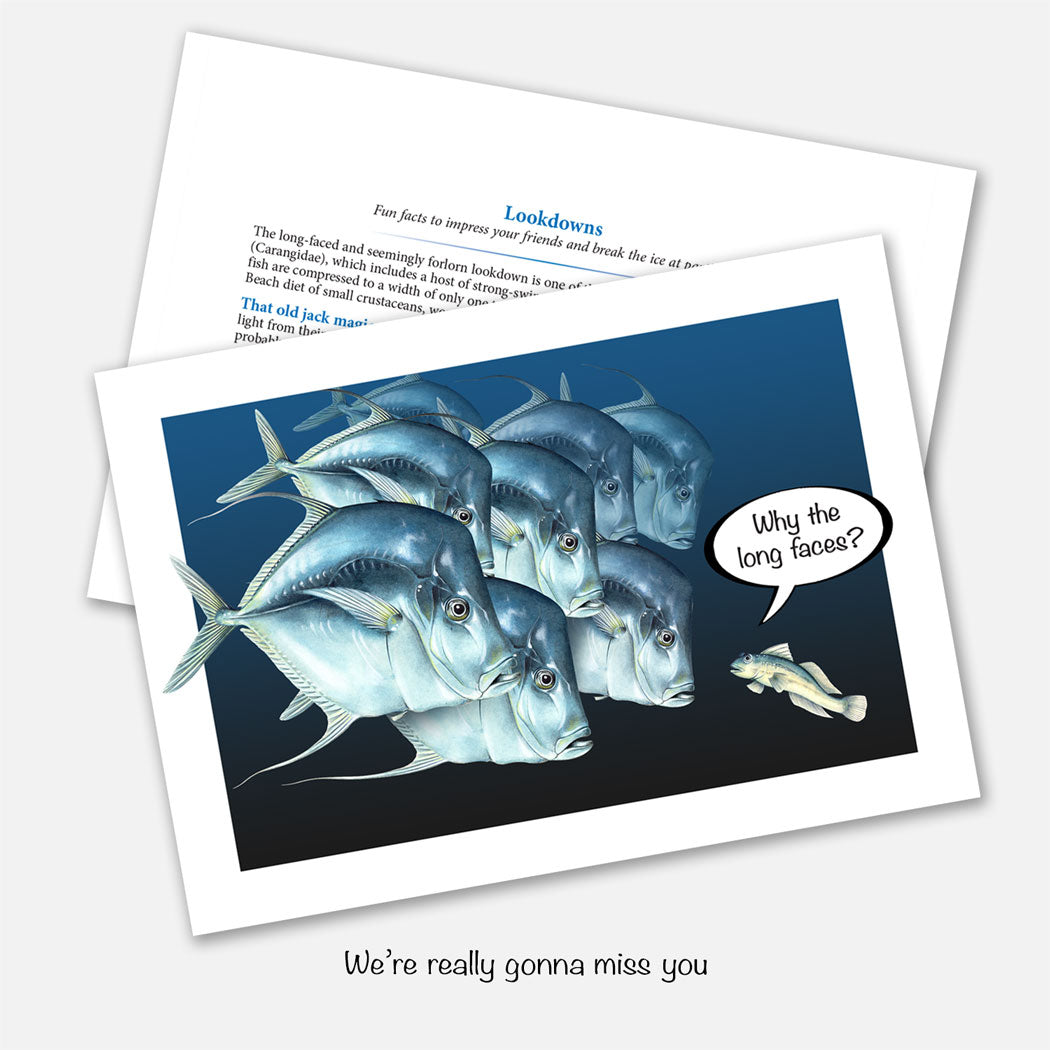 The card's image is of a small fish asking a group of lookdowns