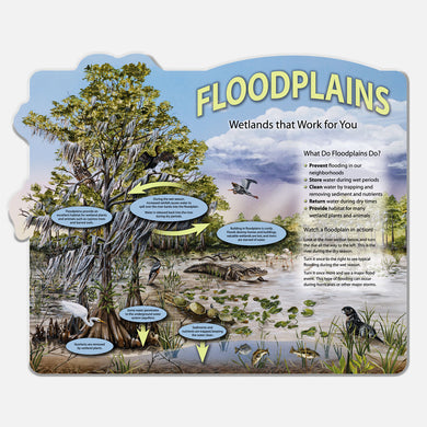 This beautifully illustrated display describes the roles of floodplains and wetlands.