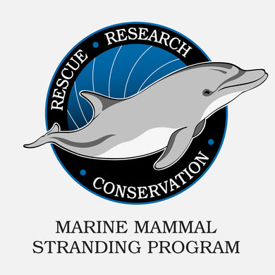 Florida's Marine Mammal Stranding Program logo. The logo is of a graphical dolphin.