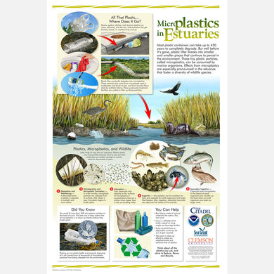 This beautiful poster provides information on the harmful plastics and microplastics that enter our estuaries.