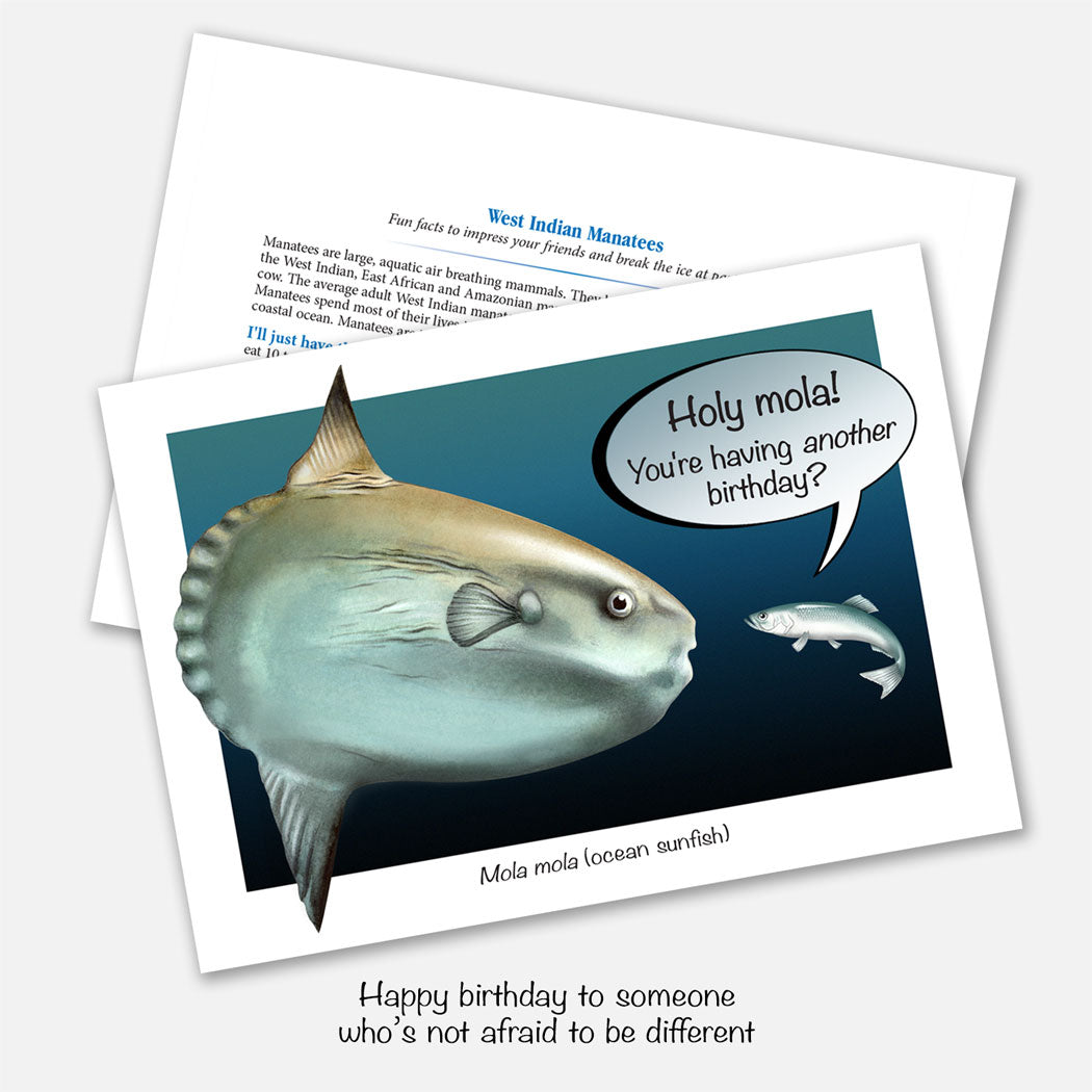 The card's image is of mola (ocean sunfish) with a smaller fish saying