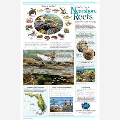 This beautiful poster provides information on the importance of nearshore reefs in Florida.