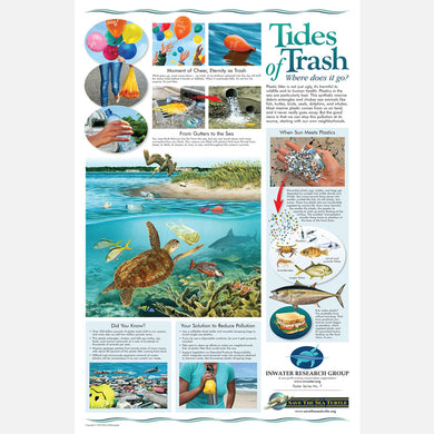 This beautiful poster provides information on the harmful plastics and microplastics that enter our waterways.
