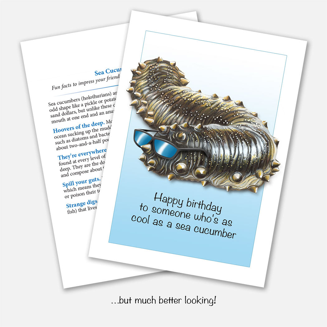Cool as a Sea Cucumber Birthday Card