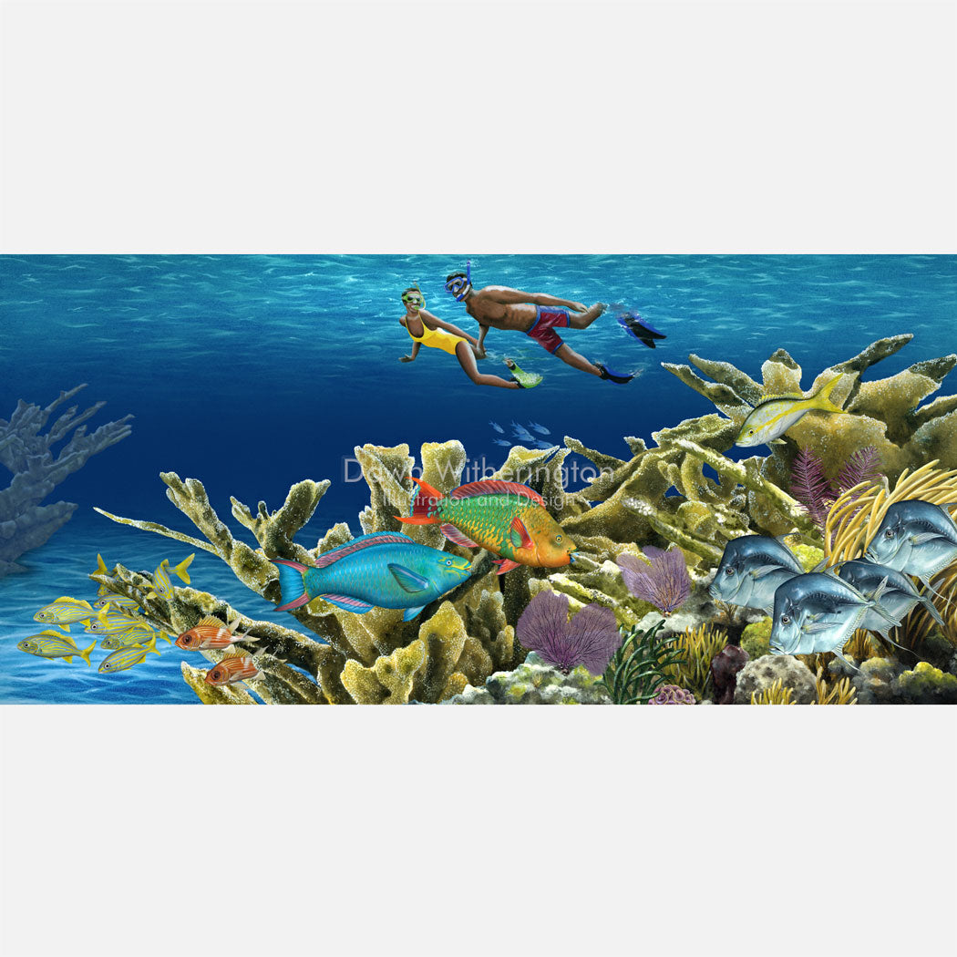 This beautiful illustration is of snorkelers over a Bahamian coral reef. The art is accurately portrayed in high detail.