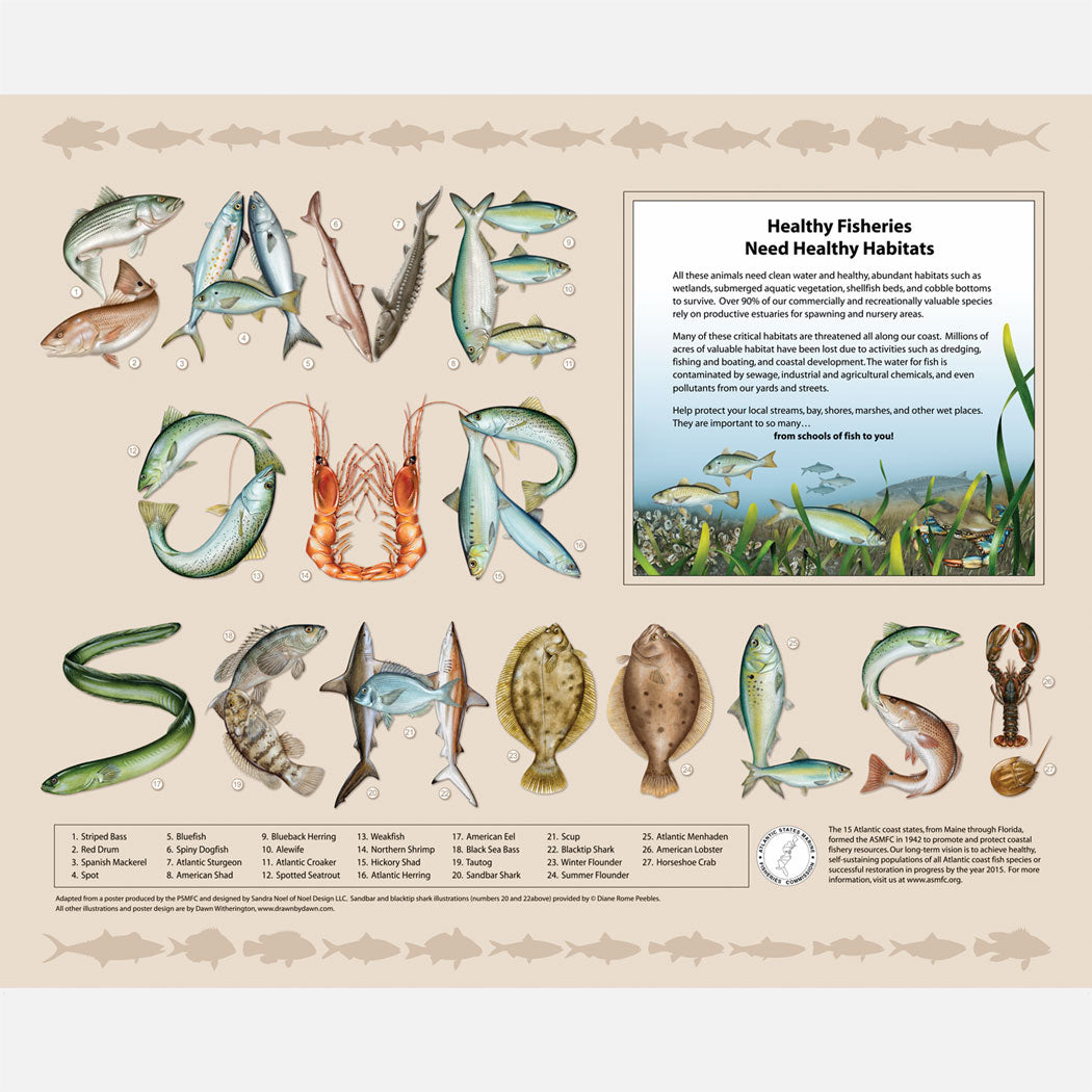 Save Our Schools poster