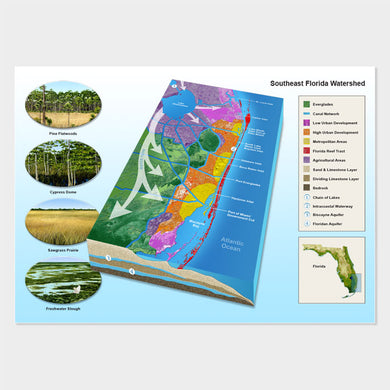 This graphic is of a Florida watershed map with habitat illustration insets.