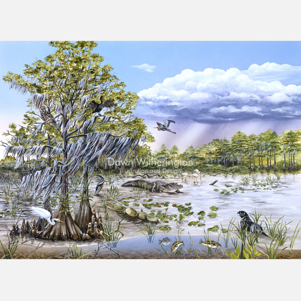 This beautiful, highly detailed illustration is of Florida wetlands and associated critters.