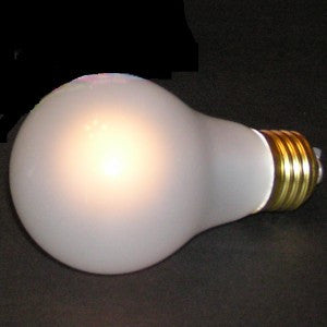 MAGIC LIGHT BULB - TRUTH INDICATOR