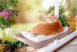 Cat Hanging Window Bed - Shop4Mojo Products