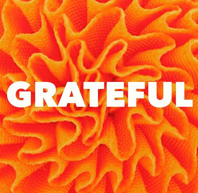 Gratefulness and the impact it has on our lives