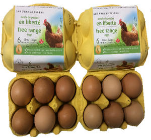 EGGS LARGE 6 UNITS FREE-RANGE VALENS