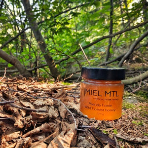 MIEL 320G FOREST MONTREAL