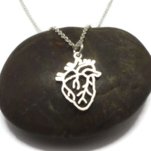 Load image into Gallery viewer, 925 Silver Anatomical Heart Necklace