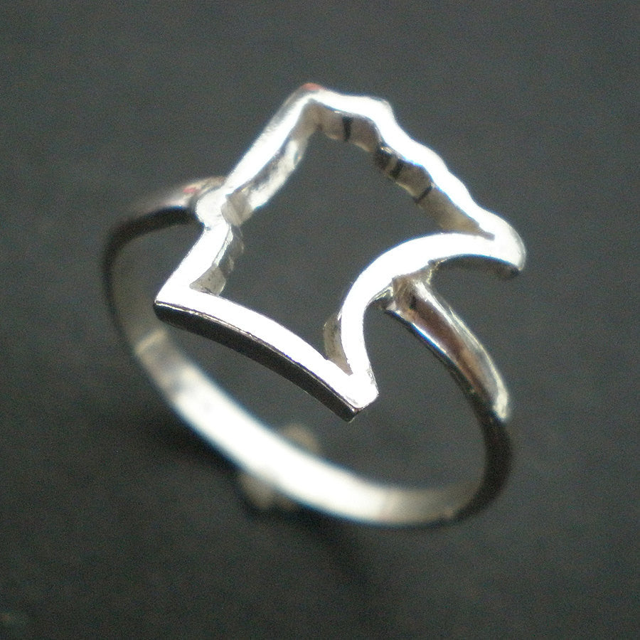 Outline Minnesota Ring
