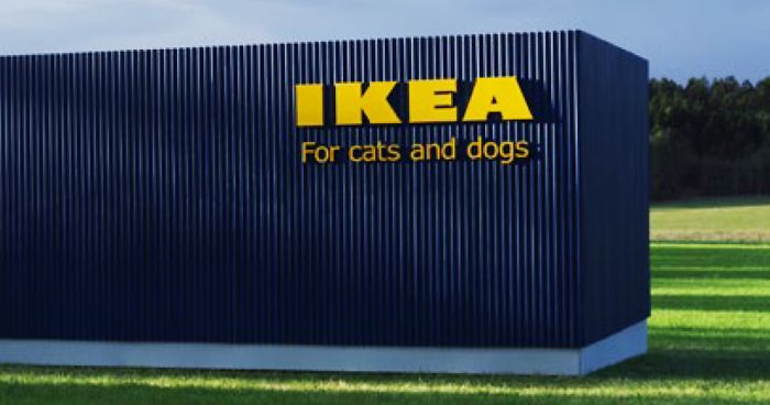 Pet-Lovers are going crazy over new IKEA pet furniture collection!