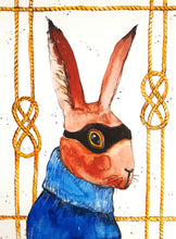 bandit,rabbit,bandit rabbit,illustration,bunny rabbit