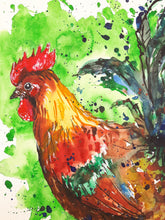 cockerel,rooster,illustration,colourful