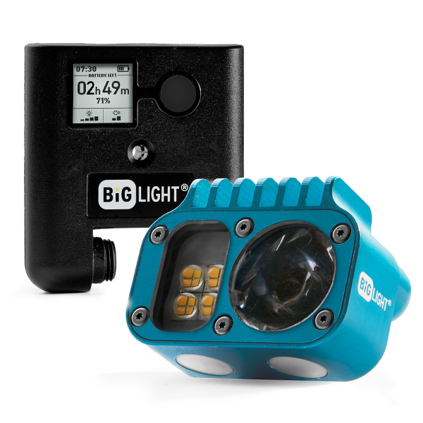 Headlamp Pro Pack – Blue