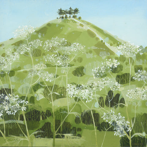 Claire Henley - Colmer's Hill, Cow Parsley