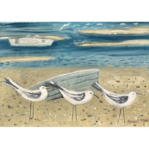 Hannah Hann - Three Terns