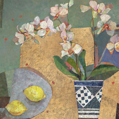 Sally Anne Fitter - Orchid