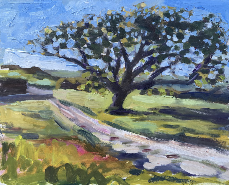 Ben Spurling -Sycamore Tree on Priest's Way Near Dancing ledge