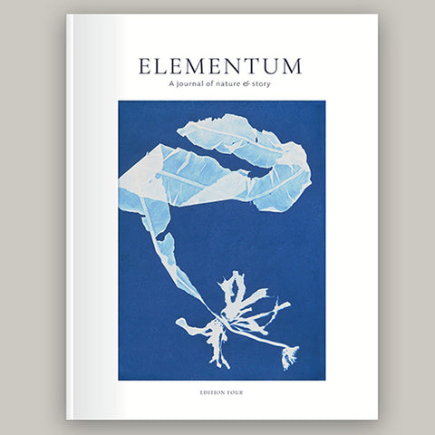 Elementum Journal: Issue 4
