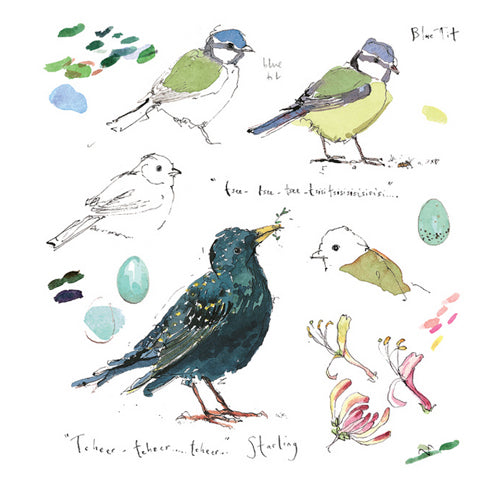 Madeleine Floyd - Blue Tit and Starling