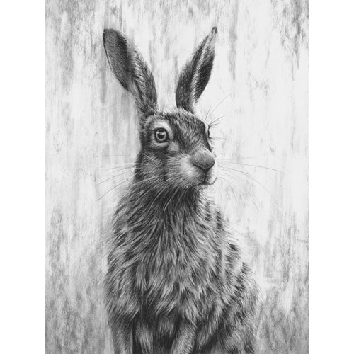 Nolon Stacey - Brown Hare III