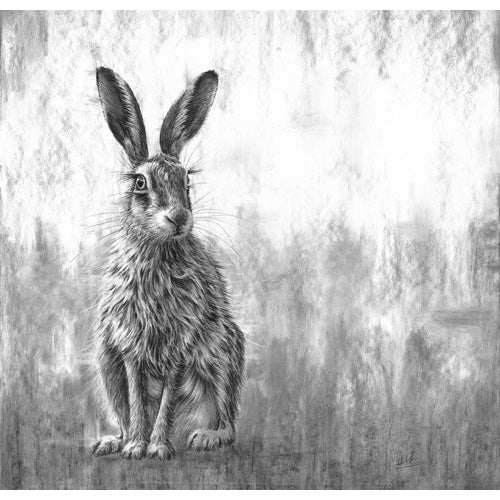 Nolon Stacey - Waiting Hare