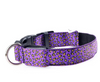 LED Leopard Dog Collars