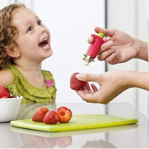 Stainless Steel Strawberry & Tomato Stem Remover