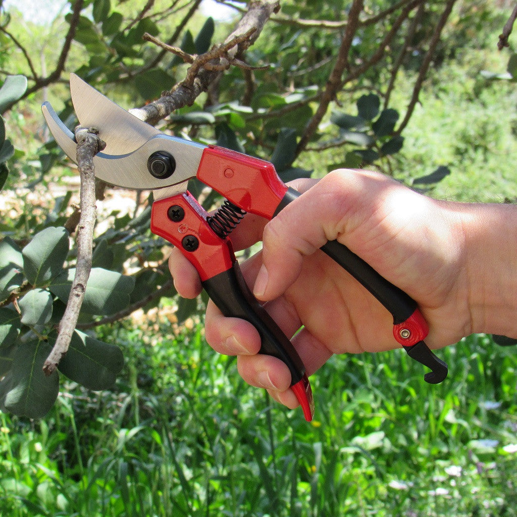 Tabor Tools S-821 Pruning Shears for Small/Medium Size Hands