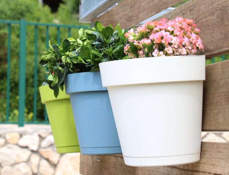 Plastic Wall Planters (8 colors)