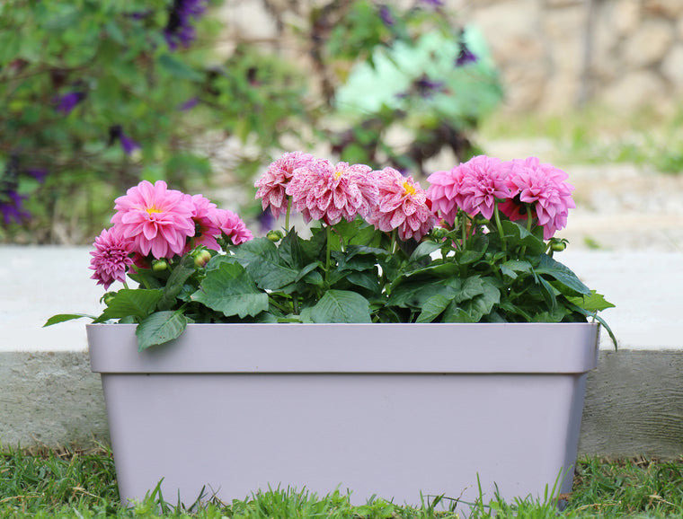 Window Planter with Drainage Plug and Stabilization Rod (8 Colors)